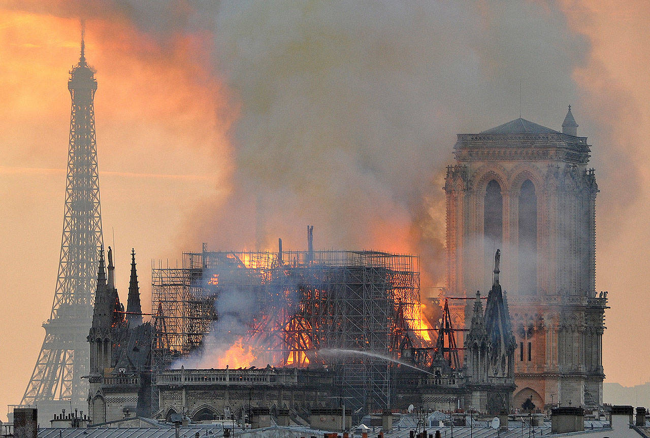 Array - poll  do you think the notre dame cathedral in paris should be      rh   vicnews com