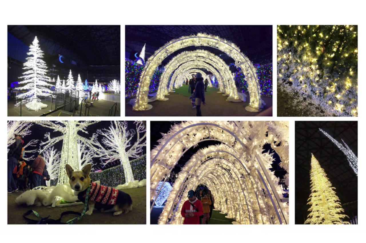 Technical difficulties delay Victoria's $500,000 Christmas light village